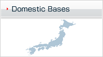 JAPANESE DOMESTIC BASES